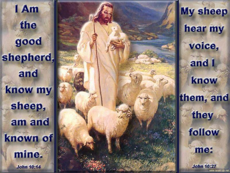 Jesus-Good-Shepherd-photo from turnbacktoGod.com