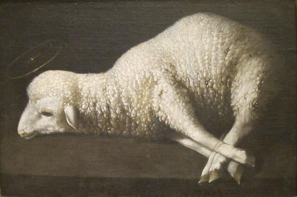 Agnus_Dei_(The_Lamb_of_God)_by_Zurbarán,_San_Diego_Museum_of_Art.jpg