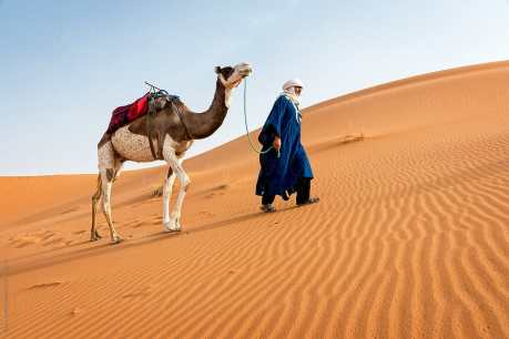 man in desert with camel Photo from stocksy united