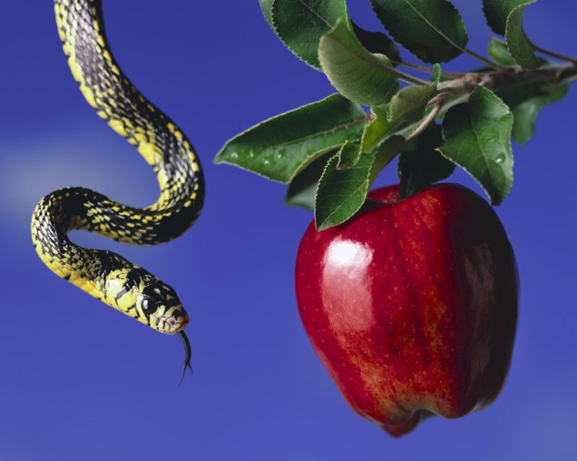 serpent and apple searchforbibletruth